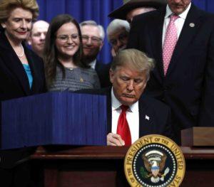 trump firma ley peleas de gallos 300x263 - Donald Trump firma medida que prohíbe las peleas de gallos en Puerto Rico