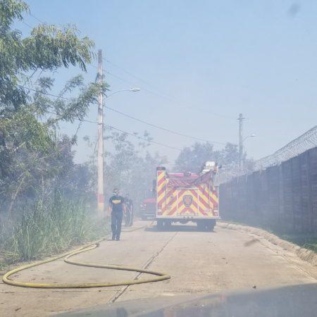 20190514 141656 450x450 - Bomberos tratan de apagar fuego en Toa Alta